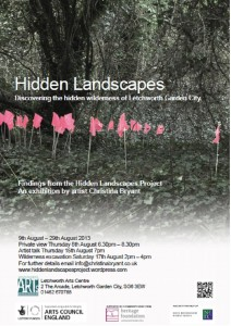 hidden landscapes exhibition poster