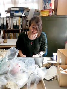 Daisy working at the Museums Resource Centre, Burymead Road in Hitchin
