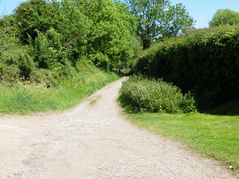 North Herts Museum update: how old is the Icknield Way?